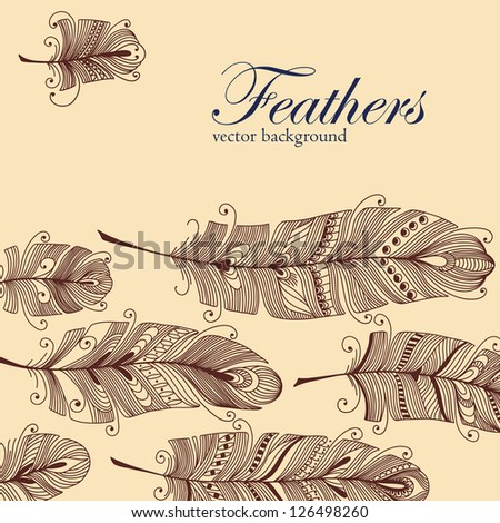 Decorative Feather vector banner and space for your text. Hand-drawn illustration. - stock vector