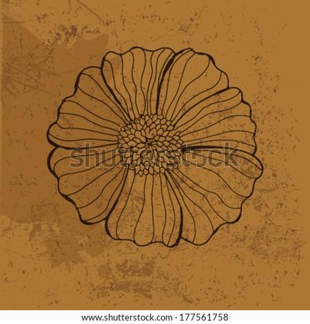 Ammonite Shell Stock Vector 111592664 Shutterstock