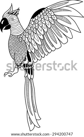 Decorative image graphically parrots in cartoon style