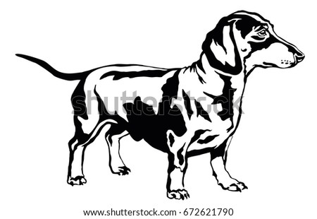 Dachshund stock images royalty free images vectors shutterstock decorative portrait of standing in profile dog dachshund vector isolated illustration in black color on ccuart Choice Image