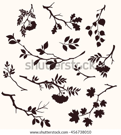 Decorative tree branches. Vector twigs silhouette - stock vector