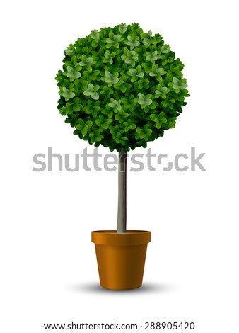 Decorative trimming boxwood tree in flowerpot. - stock vector