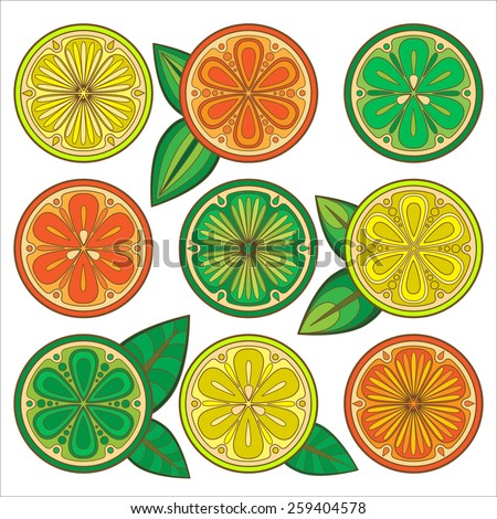 Decorative vector oranges, lemons and limes. Citrus slices in the vector.  - stock vector