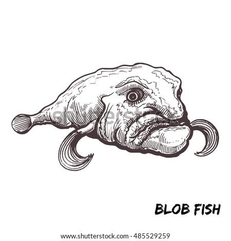 deep sea fish blobfish sketch outline stock vector royalty free