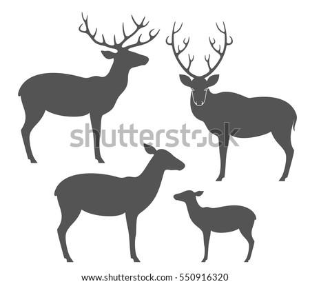 Deers Silhouette Collection Vector Stock Vector 61988608 ...
