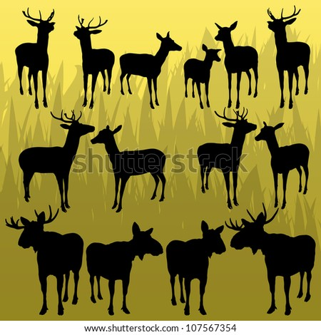 Deer and moose horned hunting trophy animals illustration collection background vector