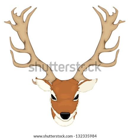 Deer antler - stock vector