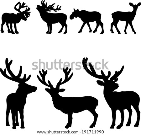 Deer collection-vector silhouette illustration isolated on white background - stock vector