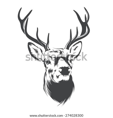 Deer Head - stock vector