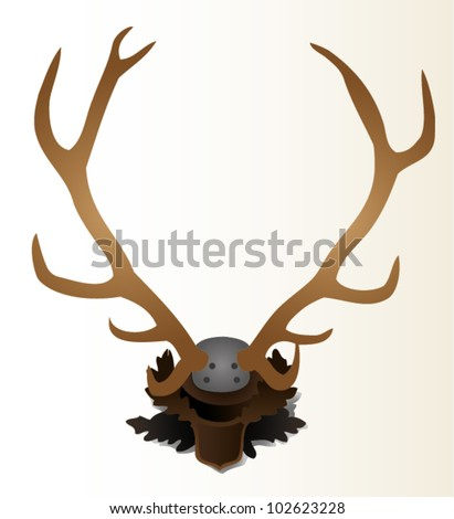 Deer horns on the wall vector illustration. - stock vector