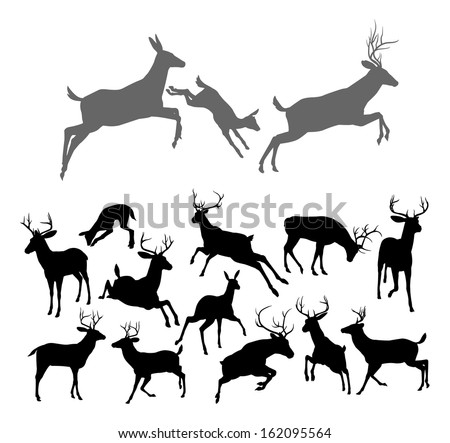 Deer silhouettes including fawn, doe bucks and stags in various poses. Includes family group of stag doe and fawn running and jumping together - stock vector