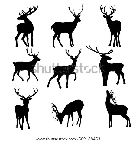 Deer heart further Set Of 18 Deer Antlers And Horns 27851240 as well Search Vectors further 73957618861940529 also Deer antlers. on antler set