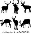 deers collection - vector - stock vector