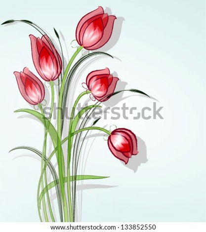 Delicate tulip - stock vector