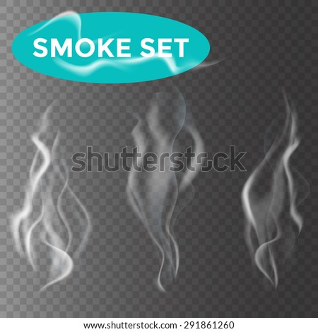 Delicate white cigarette smoke waves on transparent background vector illustration - stock vector