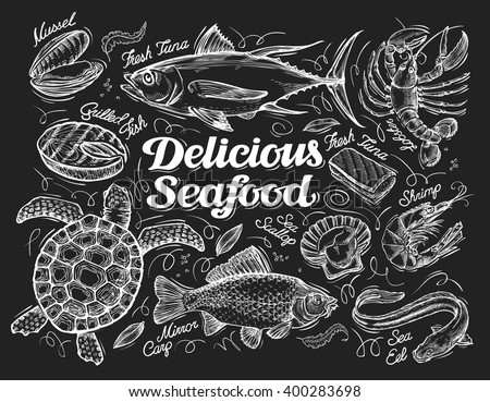 Delicious seafood. Hand drawn sketch of a fish, tuna, lobster, shrimp, scallop, eel, carp, turtle, mussel, conch. Vector illustration - stock vector