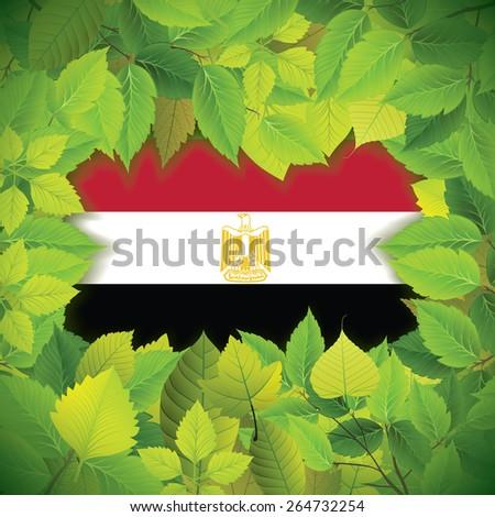 Dense, green leaves over the flag of Egypt - stock vector