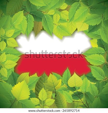 Dense, green leaves over the flag of Poland - stock vector