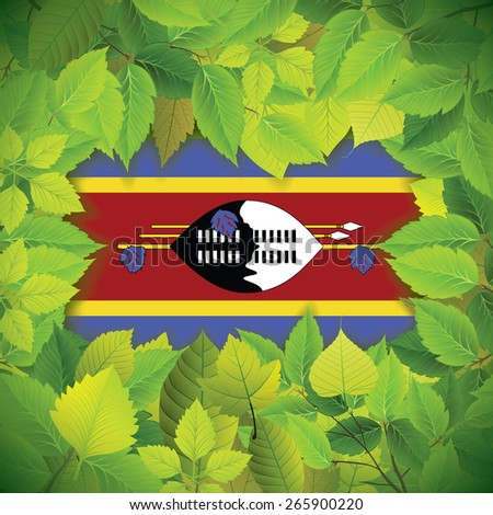 Dense, green leaves over the flag of Swaziland - stock vector