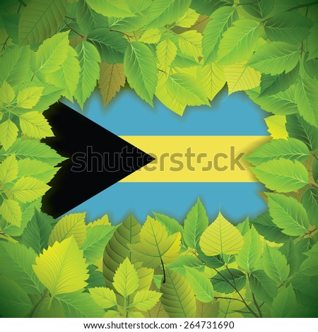 Dense, green leaves over the flag of the Bahamas - stock vector