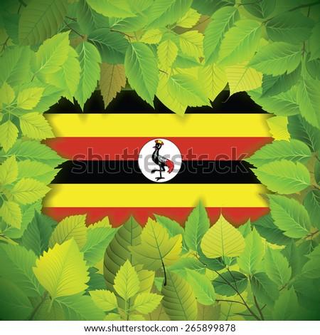 Dense, green leaves over the flag of Uganda - stock vector
