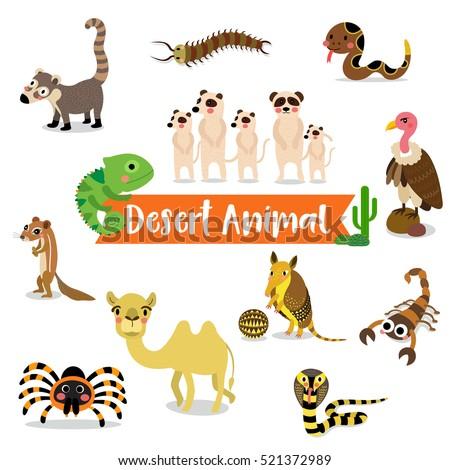 Desert Animals Cartoon On White Background Stock Vector ...