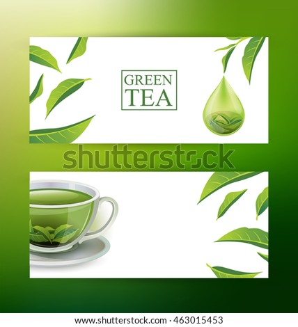Design Banner Template. Green tea vector illustration.