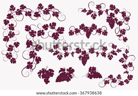 Design elements with bunches of grapes and vines in vintage style. Vector design elements in vintage style with vines. - stock vector