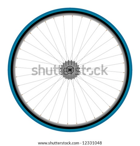 Detailed bicycle rear wheel