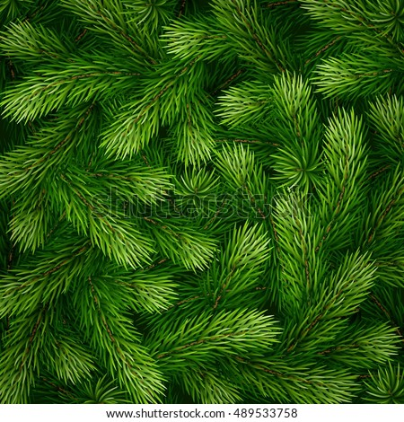 Christmas Tree Branch Stock Images, Royalty-Free Images & Vectors ...