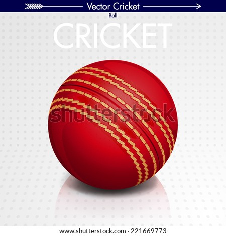 Detailed Cricket Ball