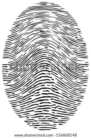 Detailed Forensic Fingerprint Vector - stock vector