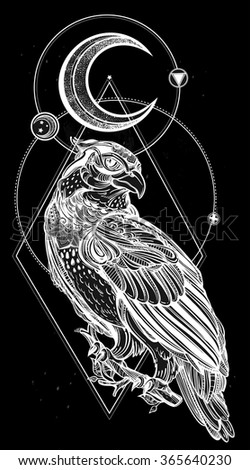 Detailed hand drawn bird of prey.