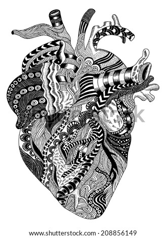 detailed handdrawn psychedelic illustration human heart stock, Muscles