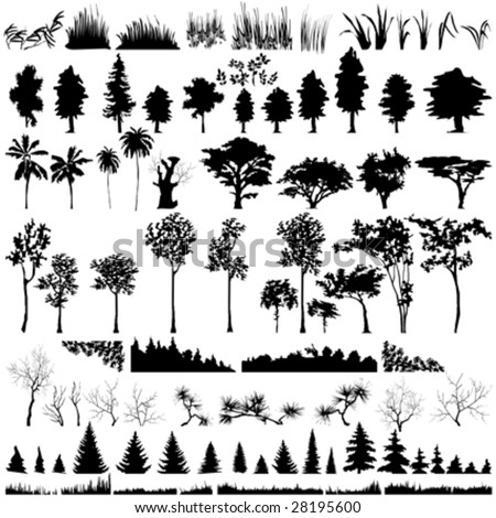 Detailed vectoral tree, leaf, branch and grass  silhouettes.