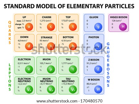 Diagram of the Standard Model of particle physics. 12 fundamental particles that make up matter and 4 fundamental force carriers. Vector.