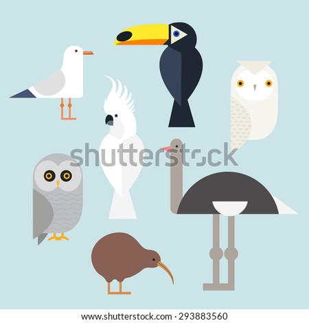 Different birds icons set include seagull, cockatoo, toucan, snowy owl, gray owl, kiwi and the ostrich. Vector illustration isolated on a white background. bird Species - stock vector