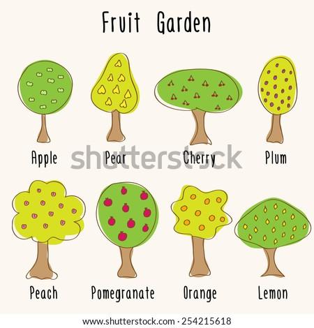 Different garden fruit trees - hand-drawn doodles. Apple, Pear, Plum, Cherry, Orange, Lemon, Pomegranate, Peach. Vector illustration. - stock vector