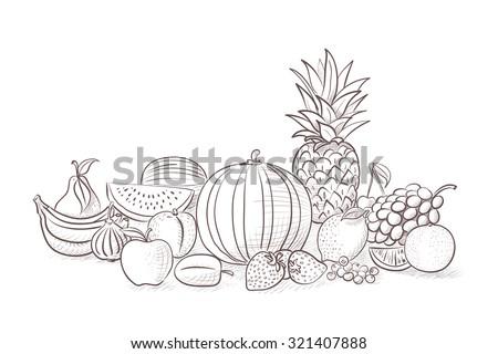 Different kind of fruits - still life illustration - stock vector