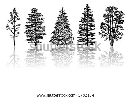 Different kind of trees - stock vector