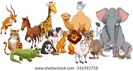 Different kind of wild animals illustration - stock vector