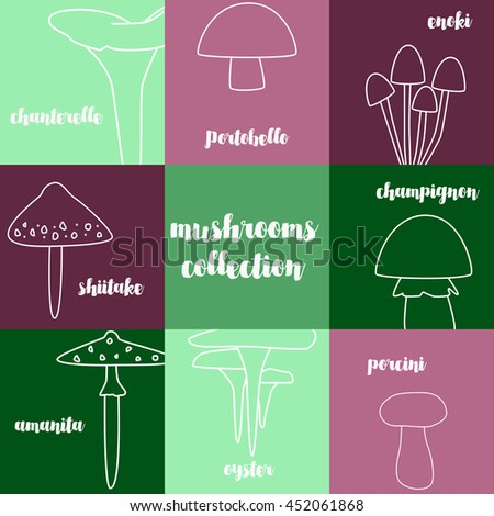 different types of mushrooms. Magnificent mushroom icons with colored spots. Autumn color palette. Vector icons  - stock vector