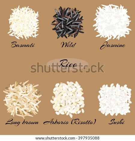 Different types of rice (basmati, wild, jasmine, long brown, arborio, sushi). Vector illustration EPS 10.