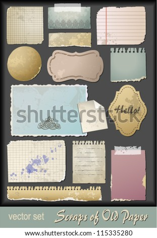 Digital scrap-booking old paper_vintage shapes and textures - stock vector