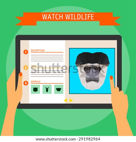 digital tablet with colobus monkey cartoon portrait and website about wildlife. Illustration in trendy flat style, isolated on bright stylish green background with slogan for use in design