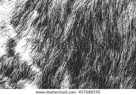 Distressed overlay texture of natural animal fur, grunge vector background.