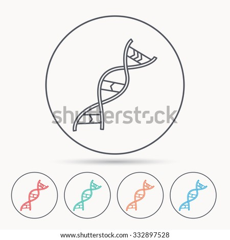 DNA icon. Genetic evolution structure sign. Biology science symbol. Linear circle icons. - stock vector
