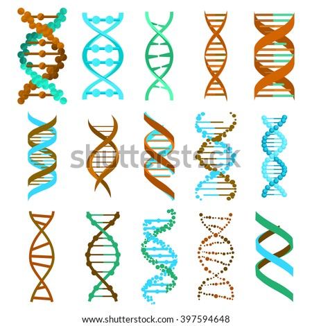 DNA molecule sign set, genetic elements and icons collection strand. Vector eps10 - stock vector