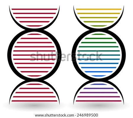 DNA strand, DNA double helix, DNA spiral symbols for genetics, nutrition concepts. - stock vector