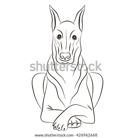 Doberman pinscher outline stock images royalty free for Doberman coloring pages